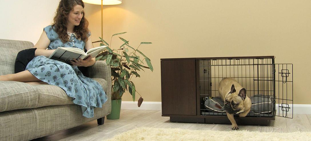 a-fido-studio-in-walnut-will-look-great-in-your-sitting-room