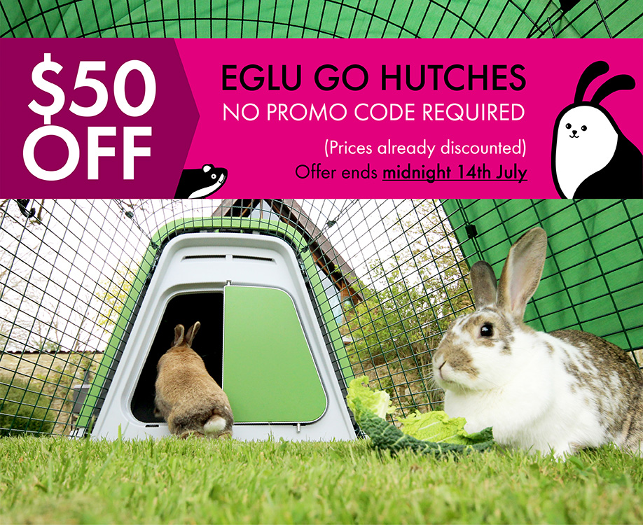 eglu-hutch-50-dollars-off-banner-varients_blog_7fcd037b