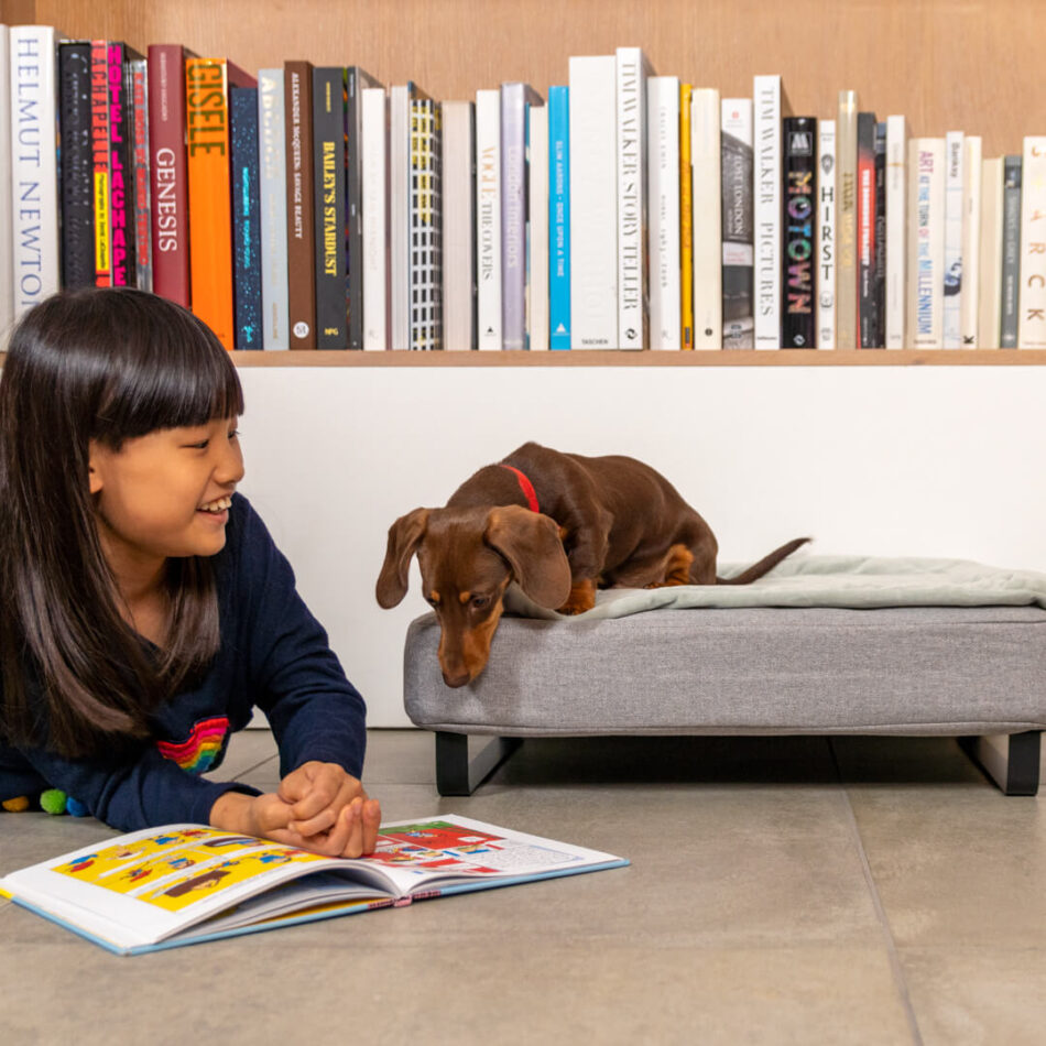 Little girl reading to her dog on topology bed